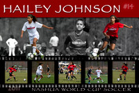 Hailey Johnson Poster Project - 2011